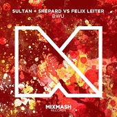 Sultan & Shepard vs. Felix Leiter - BWU (Original Mix)